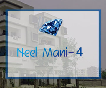 neelmani4